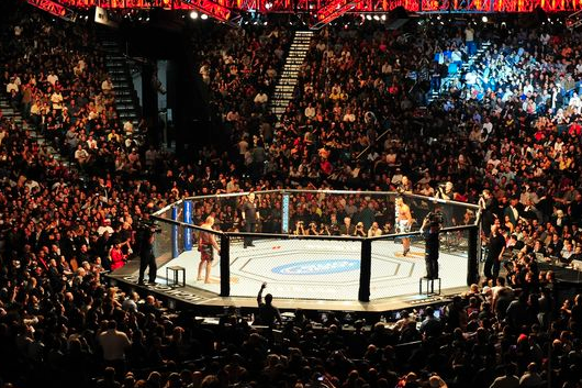 UFC Quick Quote: The UFC Will Never Be a Public Company