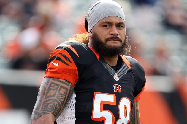 Rey Maualuga a Key Cog for Bengals, Marvin Lewis Says
