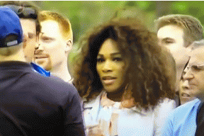 Taking Pictures of Tiger Woods Golfing Is Forbidden, Even for Serena Williams