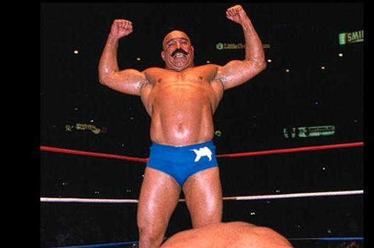 Iron Sheik: Ric Flair, Mean Gene, Honky Tonk, Hacksaw Jim Duggan All the Real