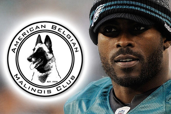 MICHAEL VICK'S NEW POOCH the Most Dangerous Breed for a Dog Killer