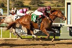2013 Kentucky Derby Contender: Hear the Ghost Loud and Clear in San Felipe Upset