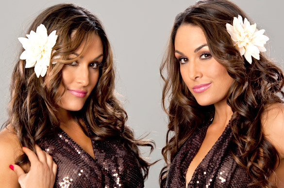 WWE Divas Division Needs Depth; Bella Twins Are Not the Answer