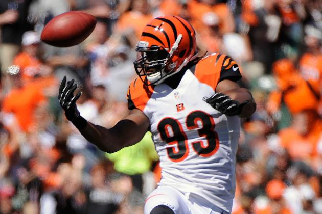 Bengals DE Michael Johnson Accepts Franchise Tender