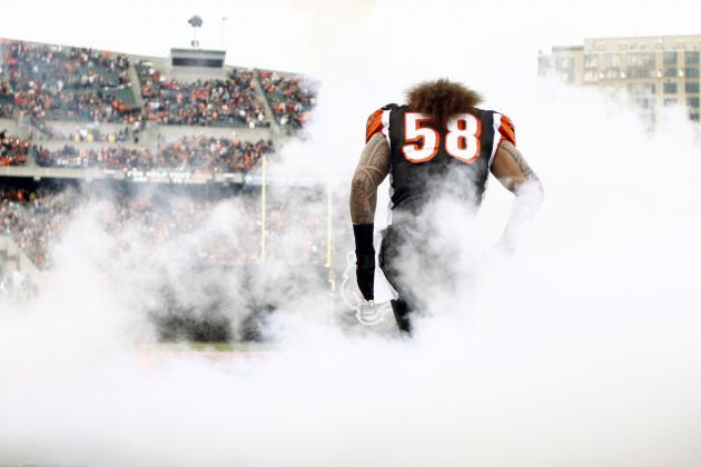 Cincinnati Bengals: What Rey Maualuga's New Contract Means Going Forward