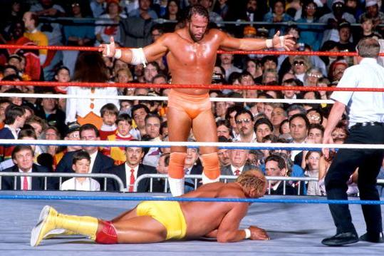 Should Hulk Hogan Induct Randy Savage into the WWE Hall of Fame?