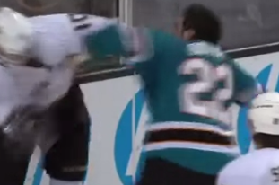 Video: Ducks' Perry Fights Sharks' Boyle