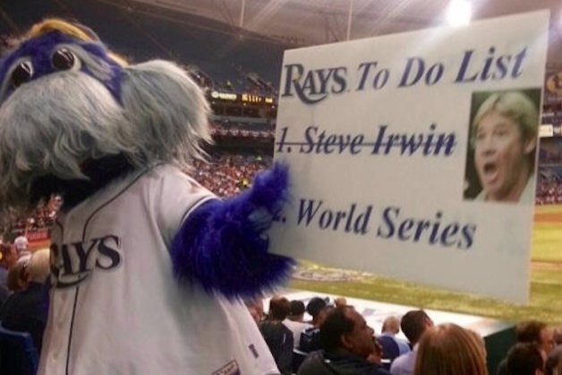 Tampa Bay Rays Officially Apologize for Fan-Made Steve Irwin Joke Sign