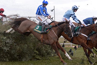Little Josh Dies in Topham Chase on Eve of Grand National at Aintree