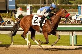 2013 Kentucky Derby Contender: Goldencents Bounces Back in Santa Anita Derby