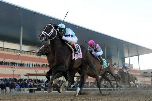 Wood Memorial: Verrazano Gets Gutsy Win in Kentucky Derby Prep