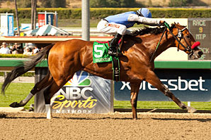 Santa Anita Derby 2013 Results: Goldencents in Line for Historic Kentucky Derby