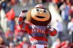 Brutus Buckeye Gets Annihilated at Spring Practice