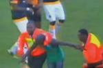 Soccer Fan Uses Vuvuzela to Attack Ref