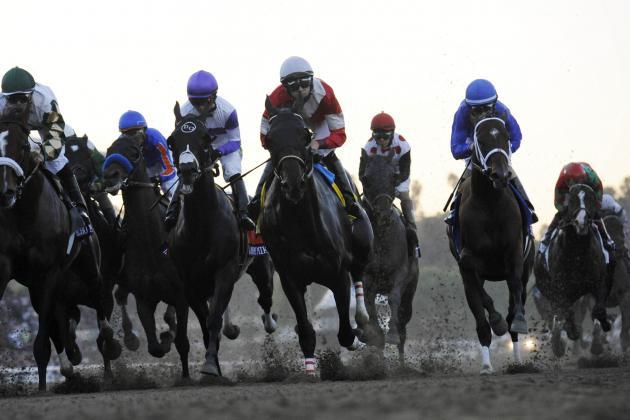 Baffert Horses Big Part of Cardiac Death Spike