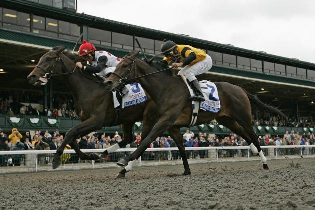 Blue Grass Stakes 2013: Post Time, Odds and Predictions for Entire Field