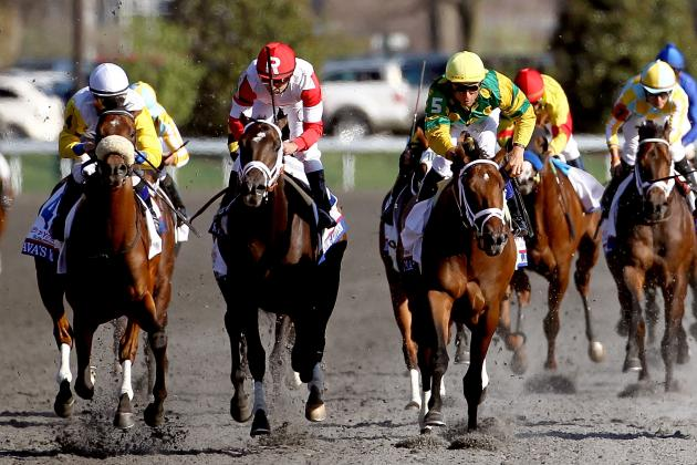 Blue Grass Stakes 2013: Winner, Leaderboard and Post-Race Analysis