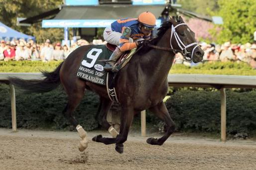 Kentucky Derby Prep Races 2013: Ranking Saturday's Churchill Downs Qualifiers