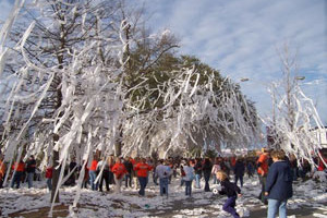 Auburn Fans Bid Goodbye to Beloved Toomer's Oaks
