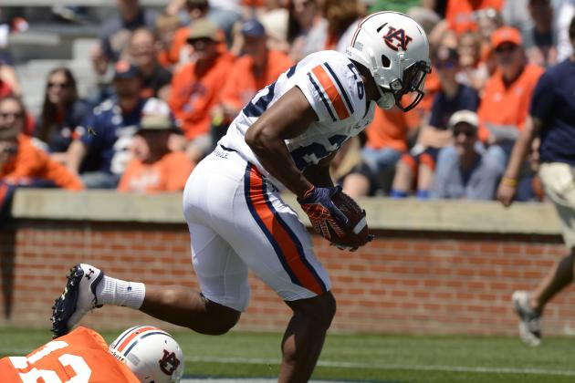 Auburn Football 2013 Spring Game: Justin Garrett Shows Star Potential