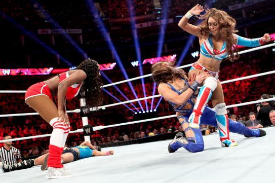 Putting Monday's Divas Battle Royal Main Event into Context