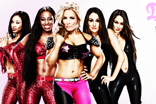 WWE 'Total Divas' Reality Show: Can It Be a Hit Among Non-Wrestling Fans?