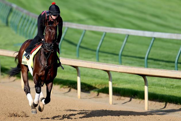 Kentucky Derby Field 2013: Showcasing Most Decorated Horses