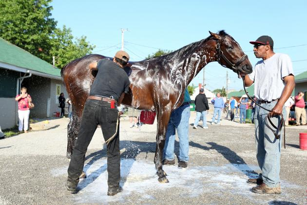 Kentucky Derby 2013 Odds: Smart Moves for Your Betting Money