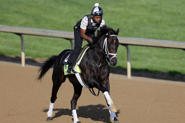 Kentucky Derby Field 2013: Projecting Finish for Each Horse