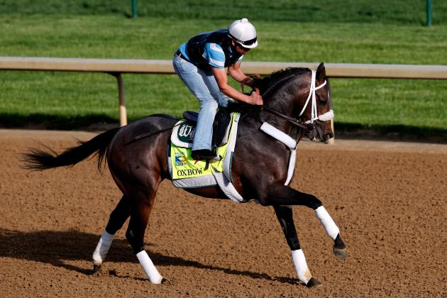 Kentucky Derby 2013: Sleepers to Look out for in Crowded Field