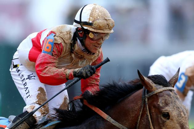 Orb Won't Win at 2013 Preakness