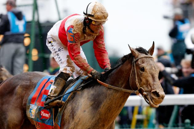 Orb's Pedigree Will Help Him at Preakness