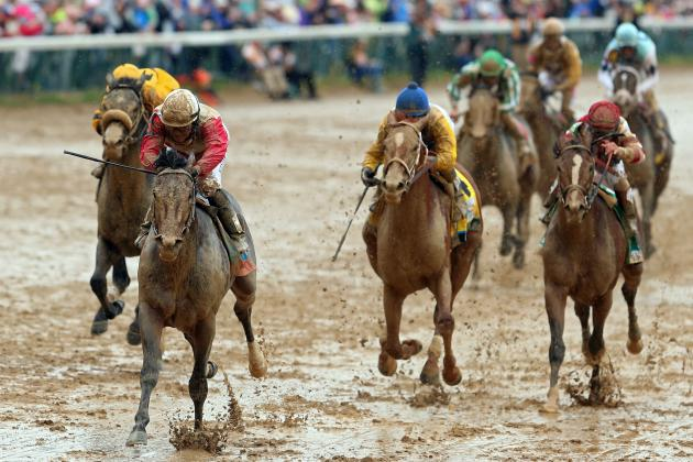 Orb Will Add Fuel to Triple Crown Fire with Preakness Victory