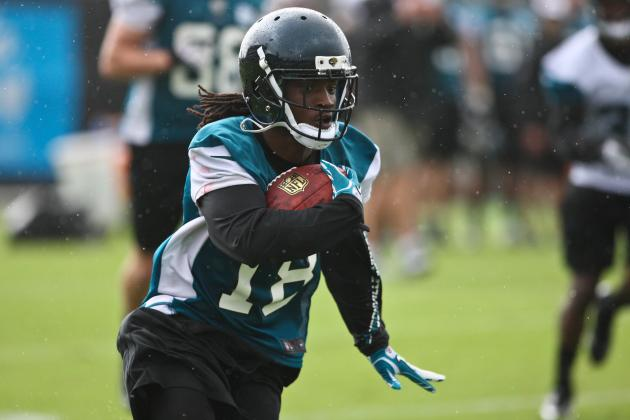 Injury Limits Ace Sanders to One Day of Minicamp Practice