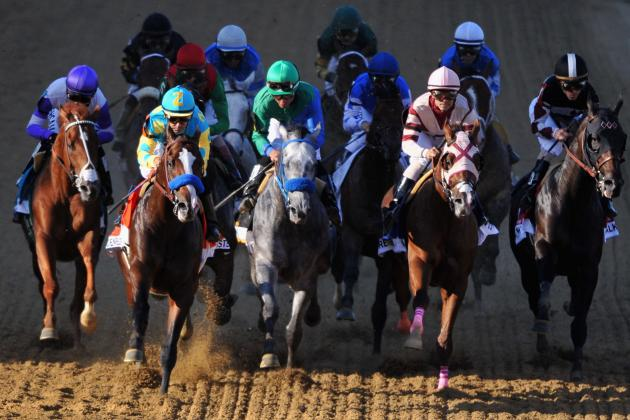 Preakness Field 2013: Analyzing Contenders with Potential to Challenge Orb