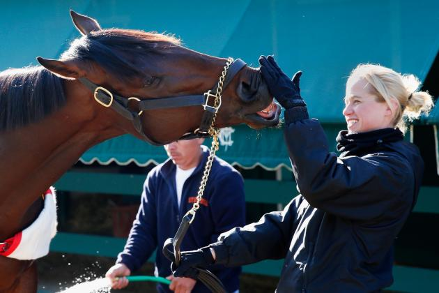Orb Will Prove Worth as Marquee Horse at 2013 Preakness Stakes on Saturday