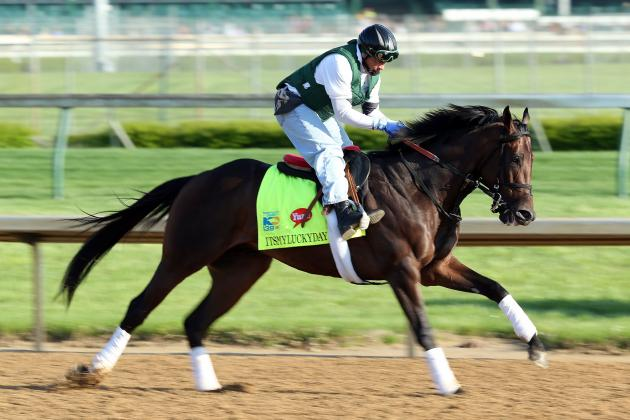 Preakness Field 2013: Profiling Long Shots and Dark Horses For Saturday's Race