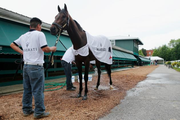 Preakness Predictions: Projecting the Top Three Finishers at Pimlico Race Course