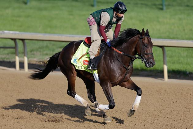 Preakness 2013 Contenders: Horses That Will Improve Upon Kentucky Derby Result