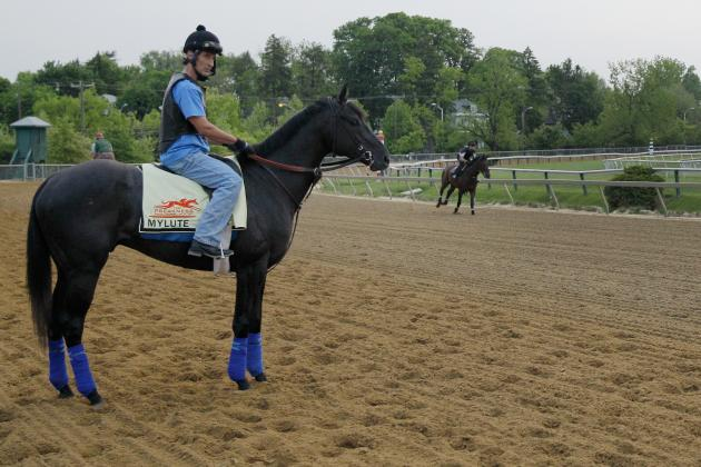 Preakness 2013: Horses Sure to Surprise Bettors