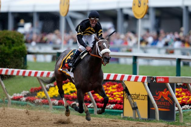 Preakness 2013 Winner: Complete Breakdown of Oxbow's Victory