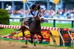 Oxbow Wins Preakness; Derby Winner Orb 4th