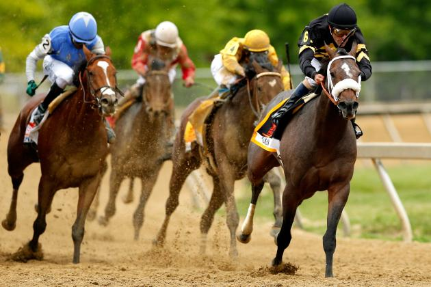Oxbow a Serious Threat to Win at Belmont After Preakness Victory