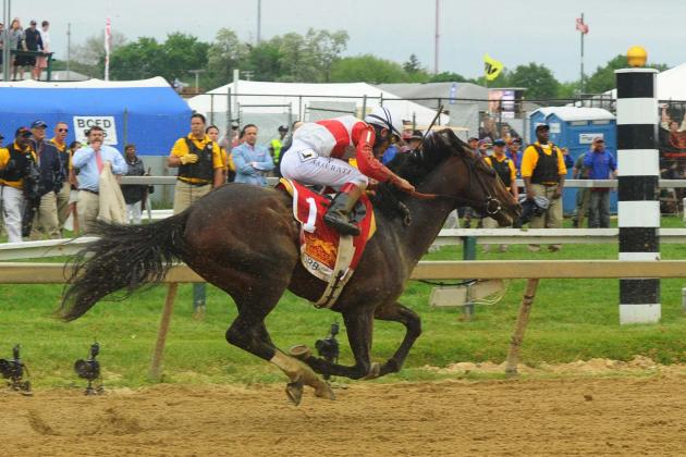 2013 Preakness: Orb's Failure Crushes Interest Level Heading into Belmont Stakes