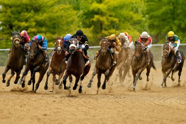 Preakness Stakes 2013: Oxbow'S Big Win Sets Up Unpredictable Belmont