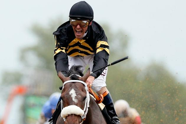 Belmont Stakes 2013: Preakness Horses We Most Want to See at Triple Crown Finale