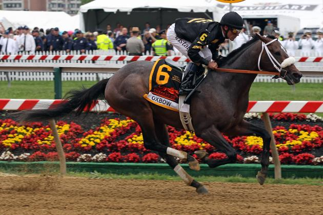 2013 Preakness: Horses Who Should Follow Up Pimlico Run with Belmont Stakes