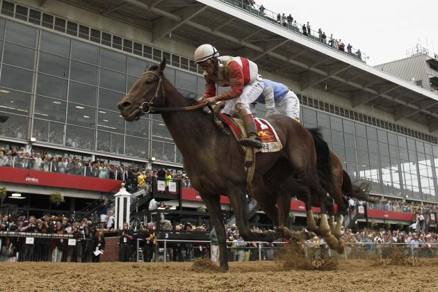Preakness 2013: Orb Will Rebound from Poor Showing at Pimlico at Belmont Stakes