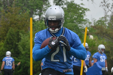 Reggie Bush Willing to Handle Punts, but Doesn't Sound Excited About It