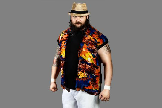 Bray Wyatt: Gimmick Is the Difference Between Him and His Brother, Bo Dallas
